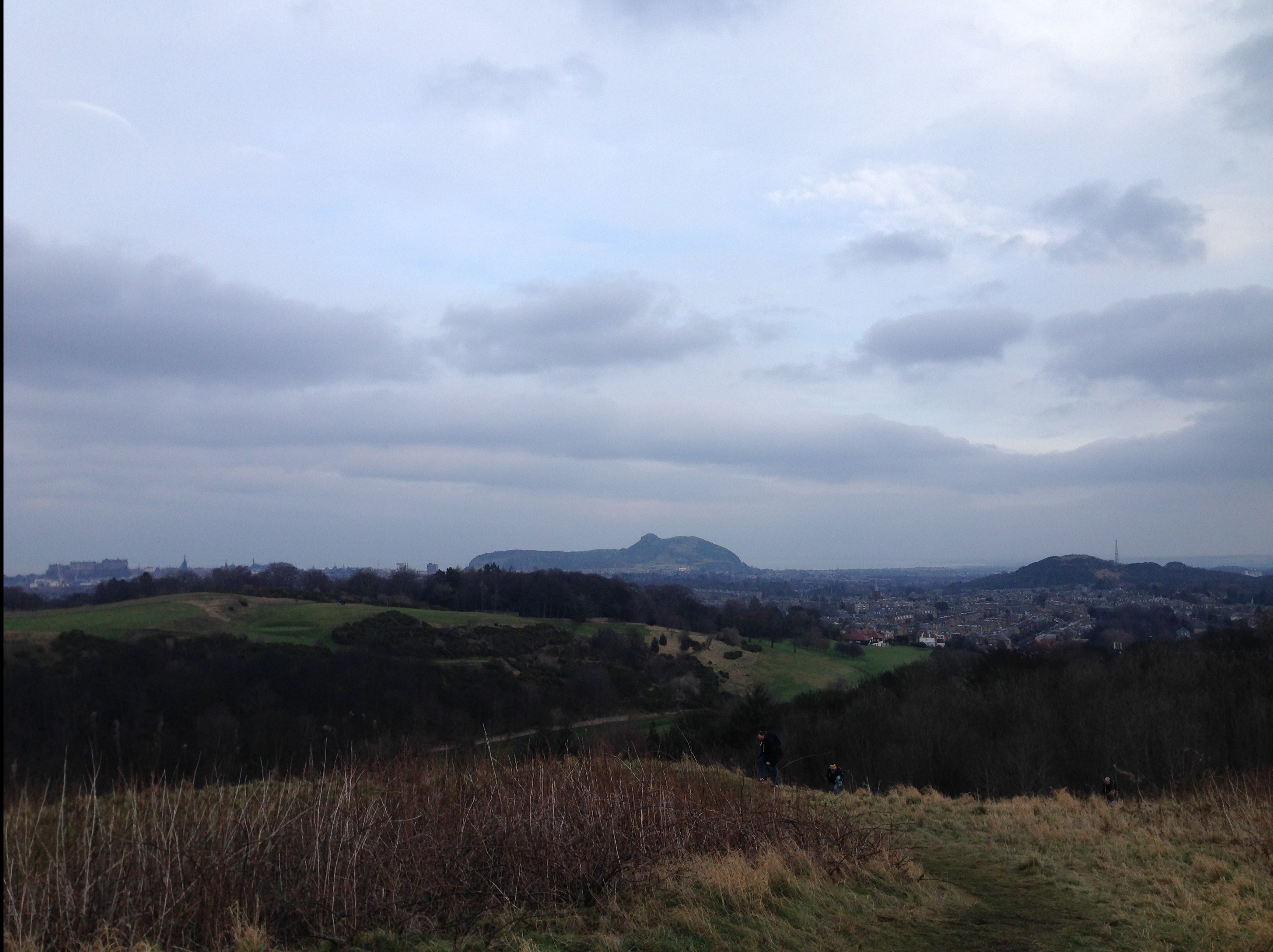 wester hill 2